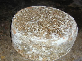 Cevrin di Coazze is produced with raw milk
