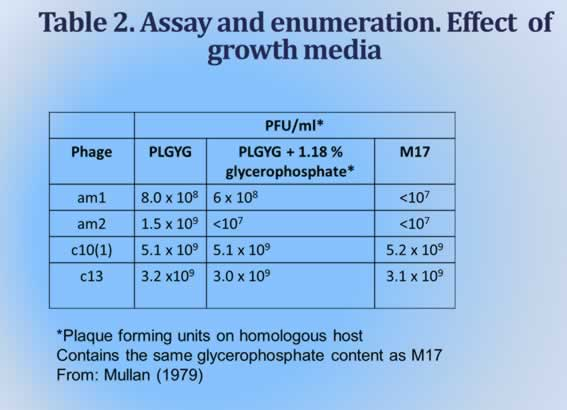 Effect of growth medium on plaque formation
